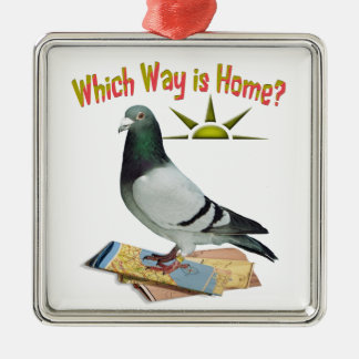 Which Way is Home? Pigeon Art Silver-Colored Square Decoration