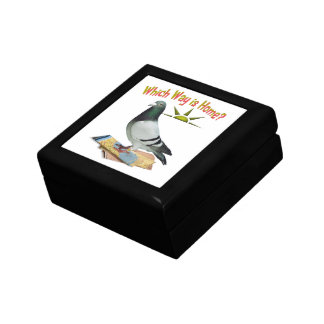 Which Way is Home? Pigeon Art Small Square Gift Box