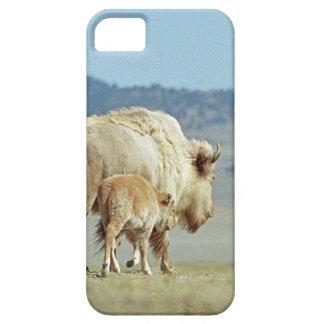While Buffalo and Calf phone case iPhone 5 Case