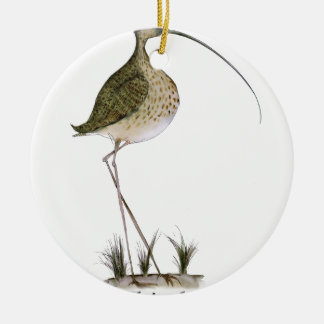 Whimbrel bird, tony fernandes round ceramic decoration