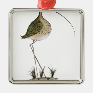 Whimbrel bird, tony fernandes Silver-Colored square decoration