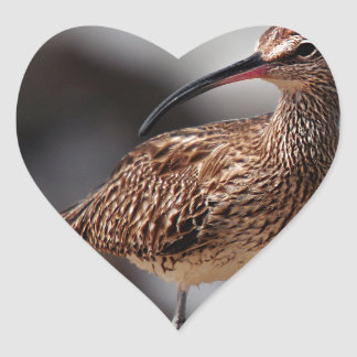 Whimbrel Heart Sticker