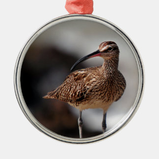 Whimbrel Silver-Colored Round Decoration
