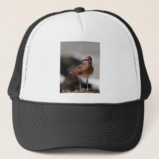 Whimbrel Trucker Hat