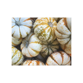 Whimsical Pumpkins Stretched Canvas Prints