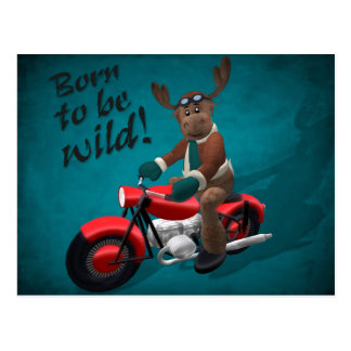 Whimsical Reindeer: Born to be wild! Postcard