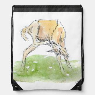Whimsical Spring Horse Foal Drawstring Bag