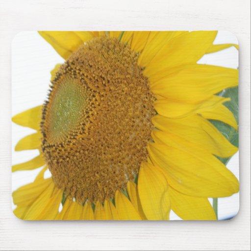 whimsical sunflower photo mousepad