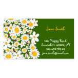 Whimsical White Daisies Spring Flowers Ladybugs Business Card