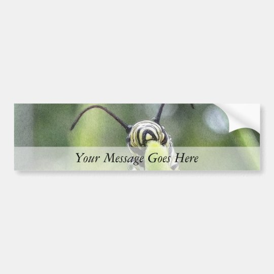 Whimsical Young Monarch Butterfly Caterpillar Bumper Sticker