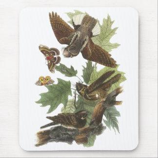 Whip-poor-will, John Audubon Mouse Pad