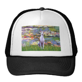 Whippet (brown-white) - Lilies 2 Cap