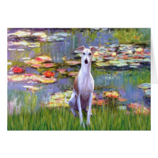 Whippet (brown-white) - Lilies 2 Greeting Card