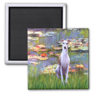 Whippet (brown-white) - Lilies 2 Square Magnet