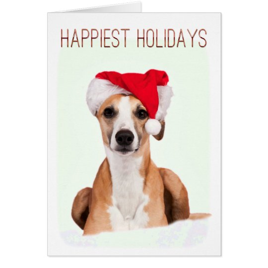 Whippet Christmas Greeting Cards