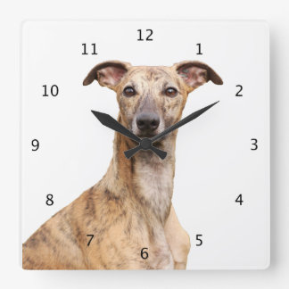 Whippet dog cute beautiful photo clocks