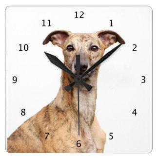 Whippet dog cute beautiful photo square wall clock