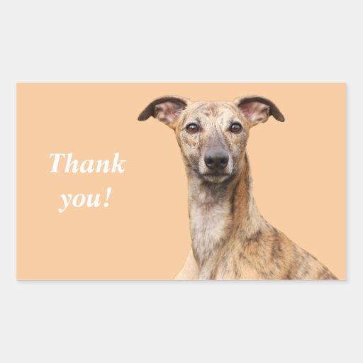 Whippet dog dog photo thank you stickers