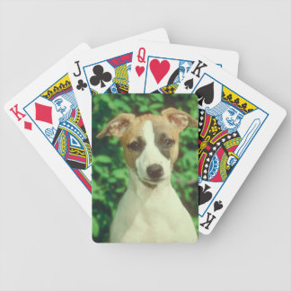 Whippet Dog Playing Cards