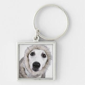 Whippet dog wearing fur coat, studio shot key ring