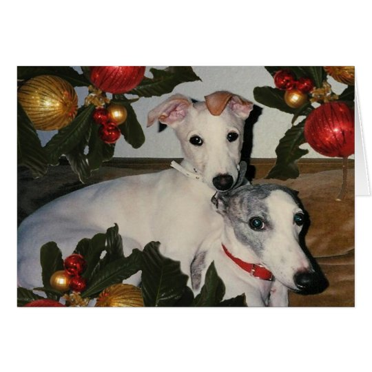 Whippet Mother and Pup Card
