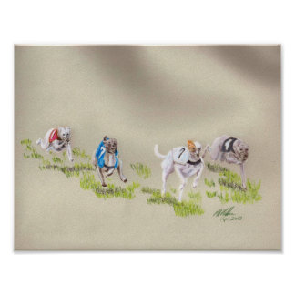 Whippet racing print