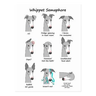 Whippet Semaphore Postcard
