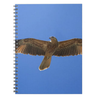 Whistling Kite, Adelaide River 2 Spiral Notebook