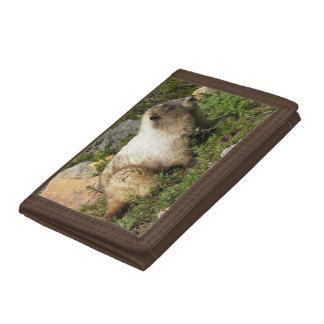 Whistling Marmot Photo Tri-fold Wallet