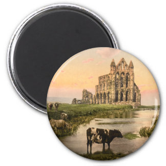 Whitby Abbey III, Whitby, Yorkshire, England 6 Cm Round Magnet