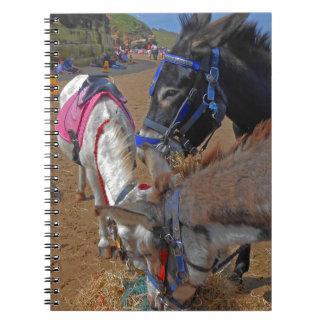 Whitby Donkeys Spiral Notebook