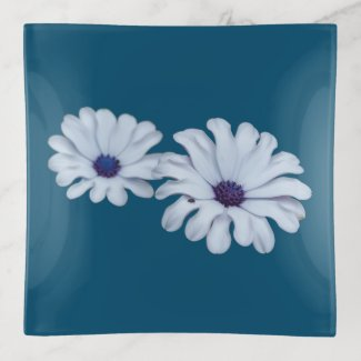 White African Daisies Trinket Tray