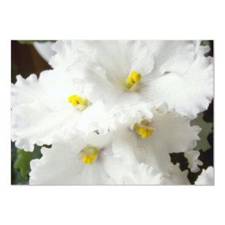 white African violet Garden Hews flowers 13 Cm X 18 Cm Invitation Card