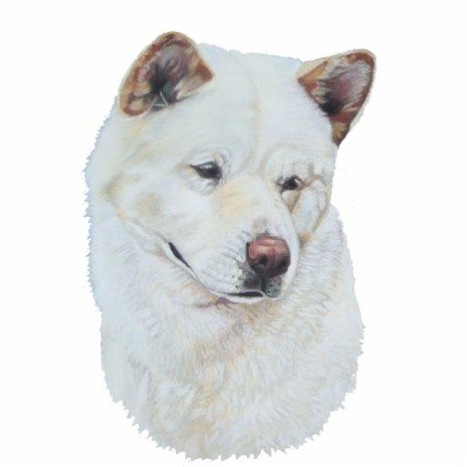 White akita realist dog portrait art acrylic cut out
