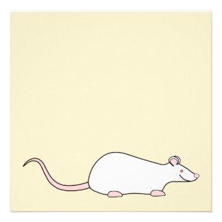 White Albino Pet Rat. Invite