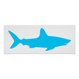 White and Aqua Blue Shark Poster