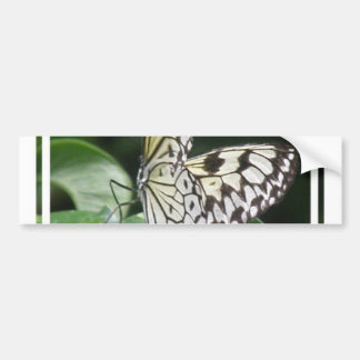 White and Black Butterfly Bumper Sticker