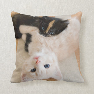 White And Black Kittens Cushion