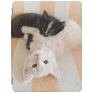 White And Black Kittens iPad Smart Cover