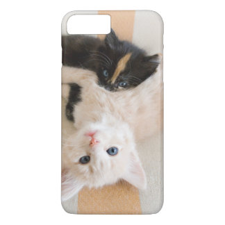 White And Black Kittens iPhone 8 Plus/7 Plus Case