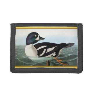 White and Black mallard ducks swimming in water Trifold Wallet