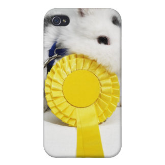 White and black rabbit on blue leash with yellow iPhone 4/4S cover