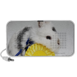 White and black rabbit on blue leash with yellow iPhone speaker