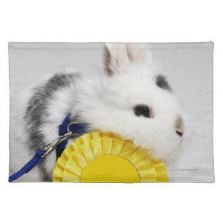 White and black rabbit on blue leash with yellow placemat
