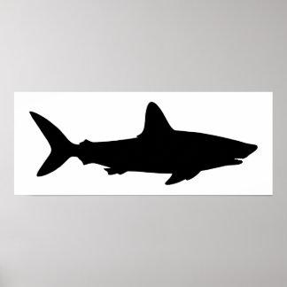White and Black Shark Poster