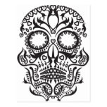 White and Black Skull / Day of the Dead Postcard