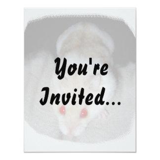 White and blonde albino hamster picture custom invitation