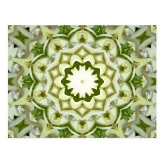 White and Green Kaleidoscope Postcard