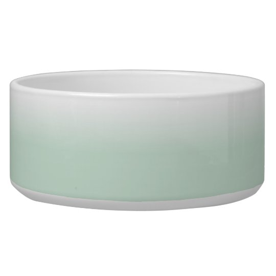White and Mint Colour Fade Large Pet Bowl