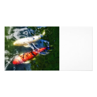 White and Orange Koi Custom Photo Card